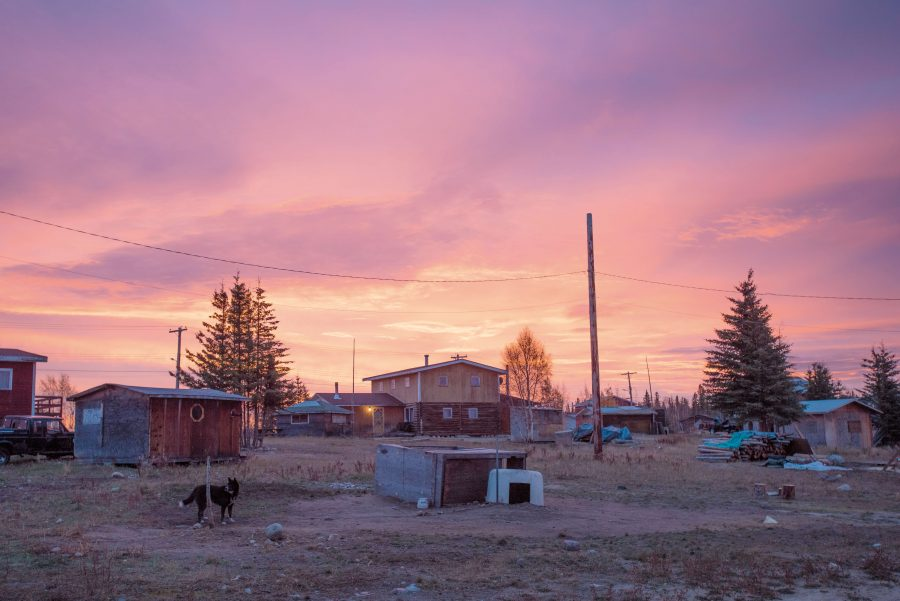 Purple sky over a small community of houses and shacks with a dog in the foreground.