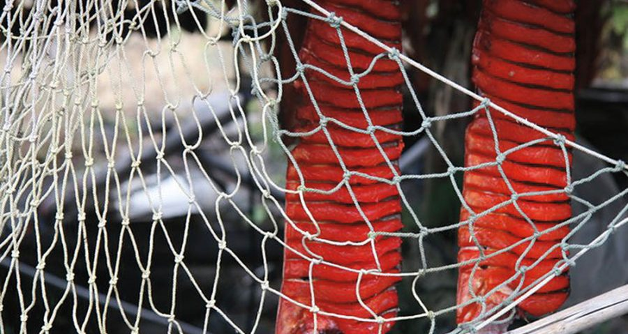 Fishing net in foreground with deep-red hanging dried salmon in background